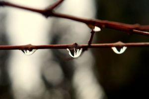 Jak przygotować wodę strukturalną domowym sposobem? (według Iwana Nieumywakina)