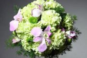 Jakie kwiaty na Dzień Kobiet?